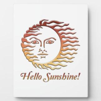 HELLO SUNSHINE Fun Sun Summer Plaque