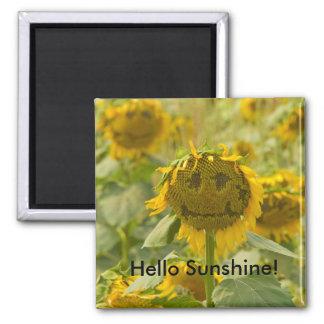 Hello Sunshine Magnet