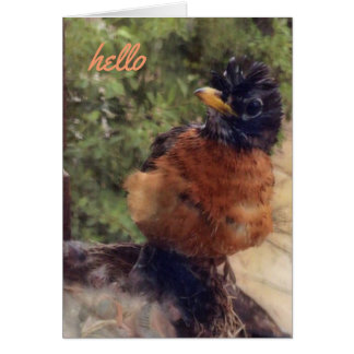 Hello There Friend (blank note card) Card