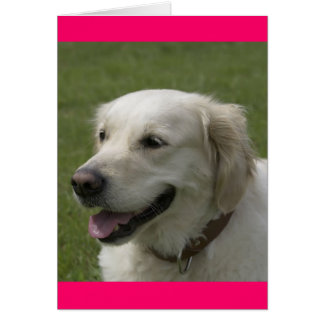 Hello, Thinking Of You Golden Retriever Puppy Card