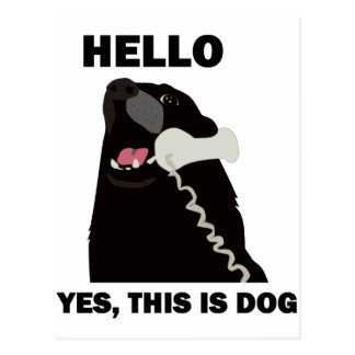 HELLO YES THIS IS DOG telephone phone Postcards