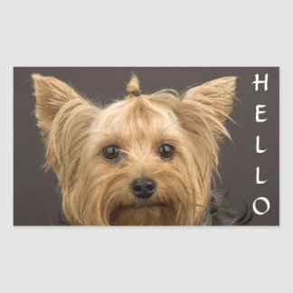 Hello  Yorkshire Terrier Yorkie Puppy Dog Stickers
