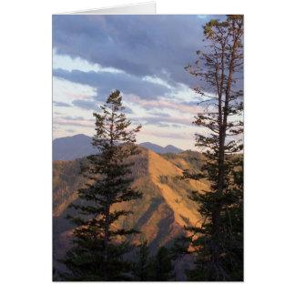 Hells vertical view card