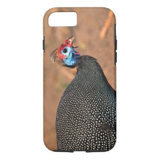 Helmeted Guinea Fowl (Numida meleagris). Africa, iPhone 7 Case