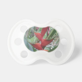 Heloconia Baby Pacifiers