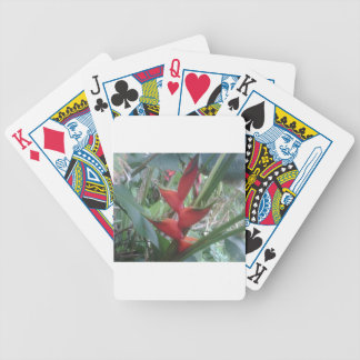 Heloconia Bicycle Playing Cards