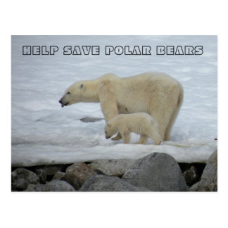 HELP SAVE POLAR BEARS POSTCARD