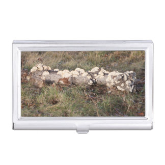 Hen And Chickens Wild Mushrooms Business Card Holder