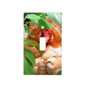 Hen and Chicks Light Switch Cover
