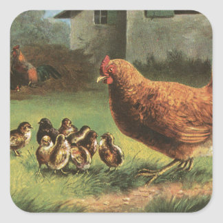 Hen and Chicks Square Sticker