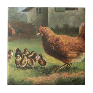 Hen and Chicks Tile