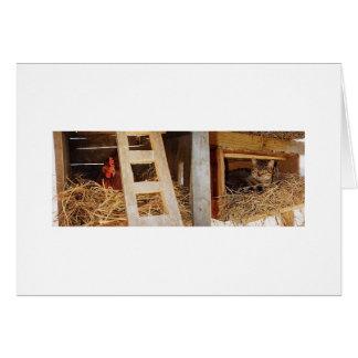 Hen & Cat Nesting Card