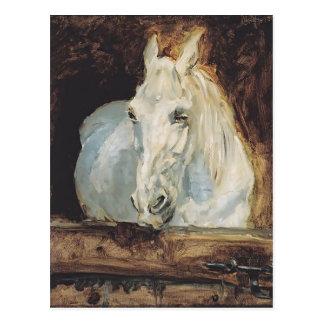 Henri de Toulouse-Lautrec- White Horse Postcard