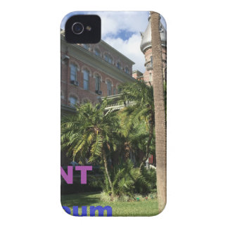 Henry B. Plant Museum iPhone 4 Cases