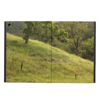 Henry Coe Hillside at Dawn iPad Air Case