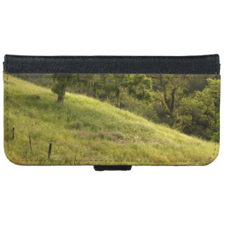 Henry Coe Hillside at Dawn iPhone 6 Wallet Case