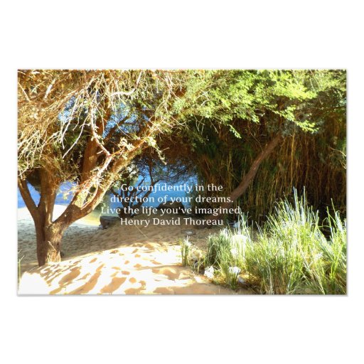Henry David Thoreau Motivational Dream Quotation Photographic Print