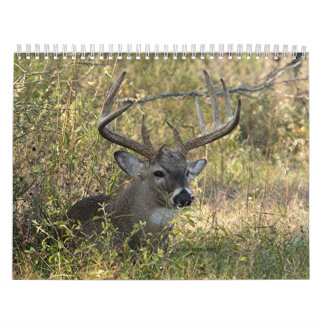 Henry's Wildlife 2008 - Customized Calendar