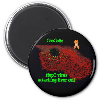 HepC virus attacking liver cell Magnet