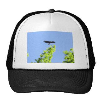 Her Majesty Hat