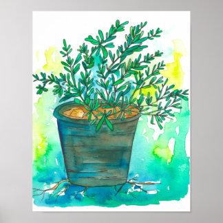 Herb Garden Rosemary Poster