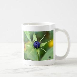 Herb paris (Paris quadrifolia) Coffee Mug