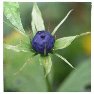 Herb paris (Paris quadrifolia) Napkins