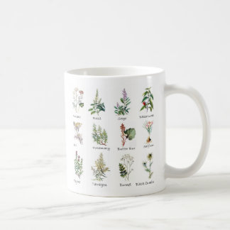 Herbs and Spices coffee cup
