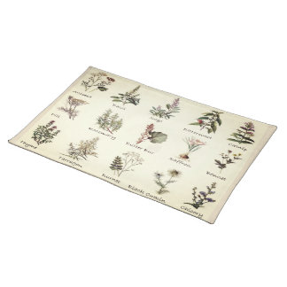 Herbs and Spices full color illustration placemats