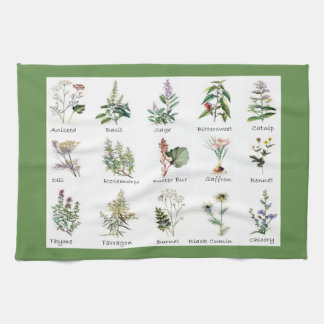 Herbs and Spices full color illustrations Kitchen Towel