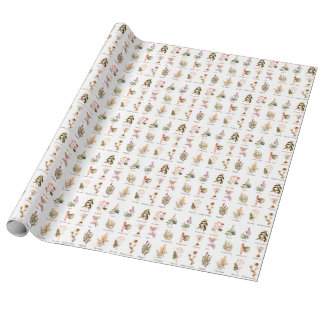 Herbs and Spices full color illustrations wrapping Wrapping Paper