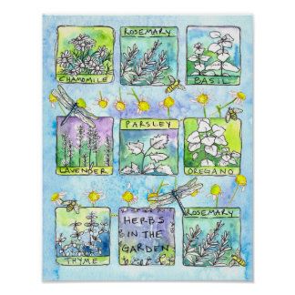 Herbs Garden Dragonflies Honey Bees Kitchen Art Poster