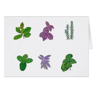 Herbs in watercolour card