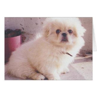 Hercules as a puppy card