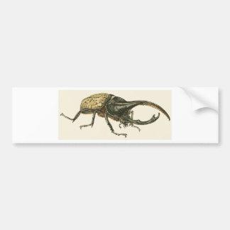 Hercules Beetle Bumper Sticker