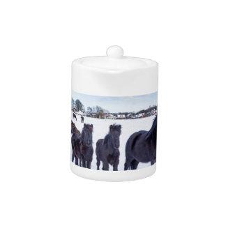 Herd of black frisian horses in winter snow