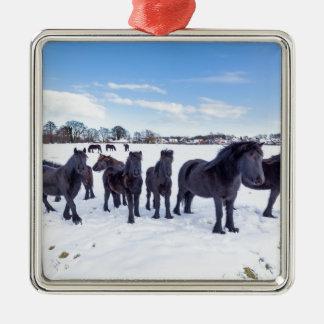 Herd of black frisian horses in winter snow Silver-Colored square ornament