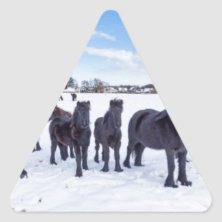 Herd of black frisian horses in winter snow triangle sticker