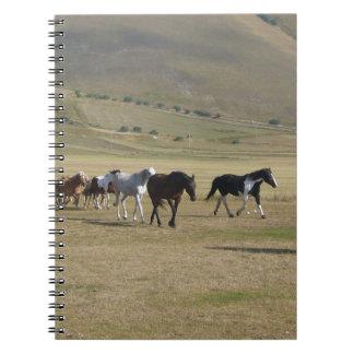 Herd of Horses Notebook