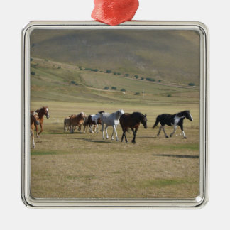 Herd of Horses Silver-Colored Square Ornament