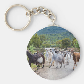 Herd of mountain goats walking on road keychain