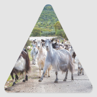 Herd of mountain goats walking on road triangle sticker