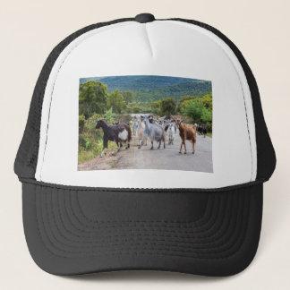 Herd of mountain goats walking on road trucker hat
