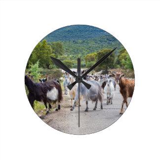 Herd of mountain goats walking on road wall clock