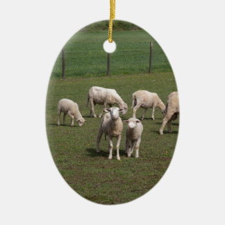 Herd of sheep ceramic oval ornament