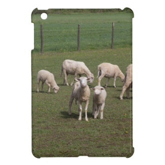 Herd of sheep iPad mini case