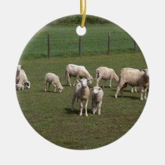 Herd of sheep round ceramic ornament