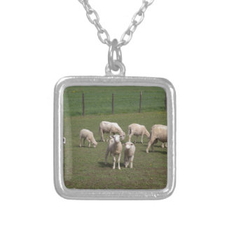 Herd of sheep silver plated necklace