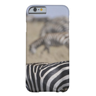 Herd of Zebras grazing, Masai Mara Game Reserve, Barely There iPhone 6 Case
