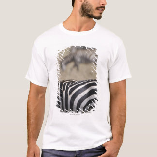 Herd of Zebras grazing, Masai Mara Game Reserve, T-Shirt